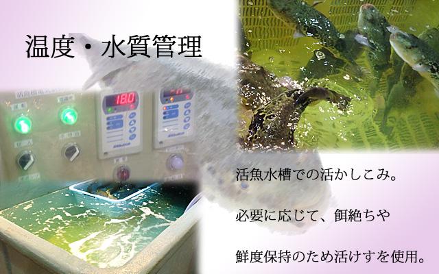 山口県下関市ふぐの魚重